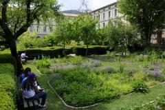 jardin_cordeliers (2)
