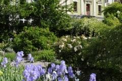 jardin_cordeliers (4)