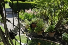 jardin_cordeliers (5)