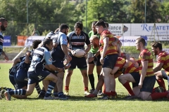 TOURNOI-NATIONS-RUGBY-DIGNE-2018 (18)