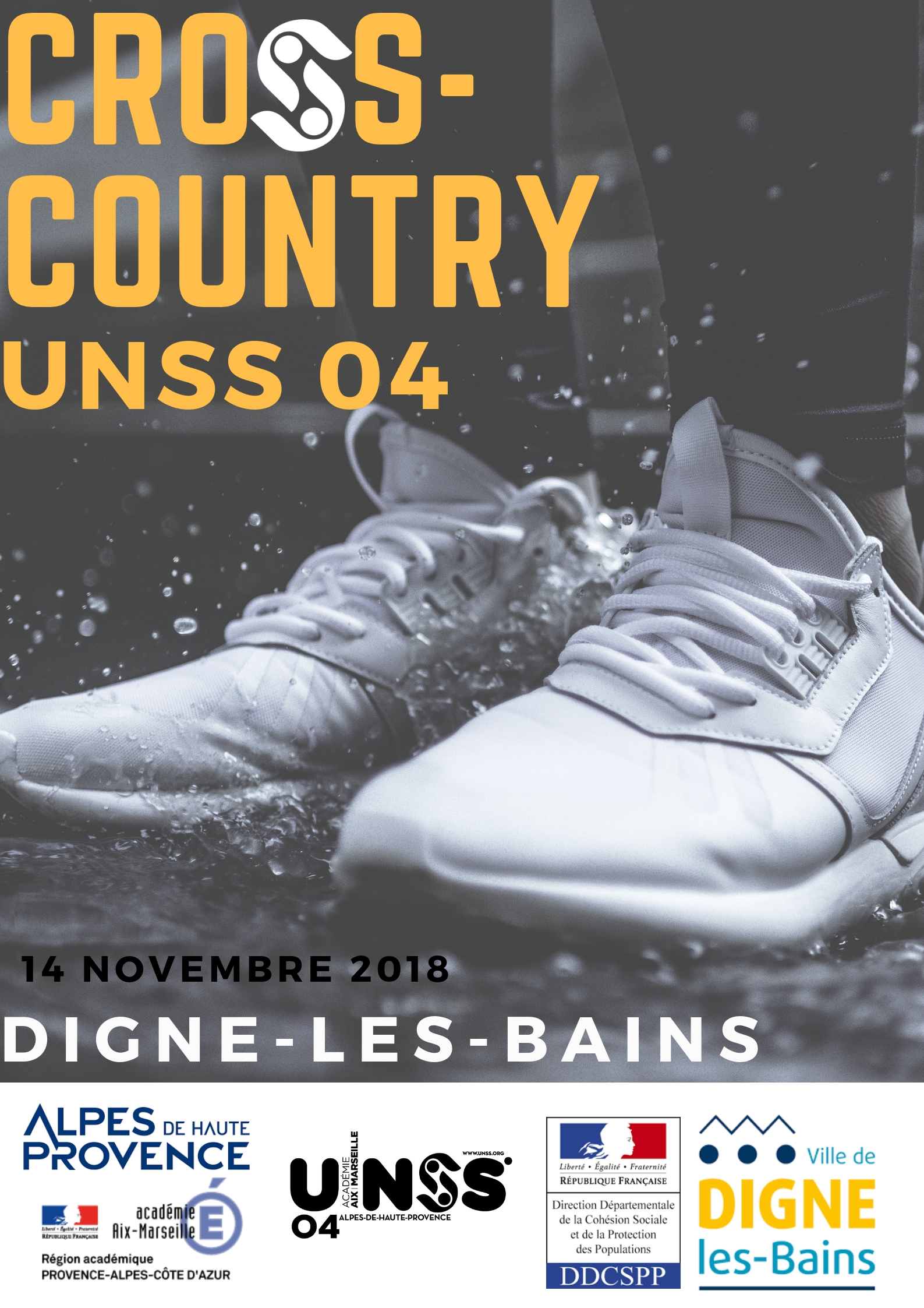 Affiche cross-country